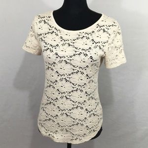 LOFT Cream, Stretch Lace Top/Tee - Small
